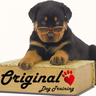 Original Dog Training